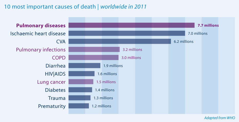10 most important causes of death